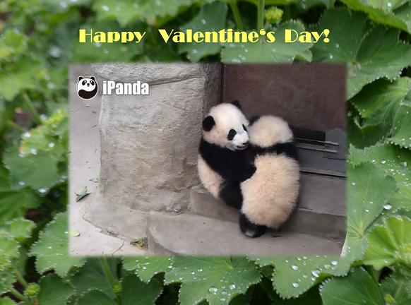 14. Februar – Valentinstag